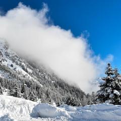 Зимова ідилія