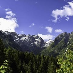 Літо в Альпах