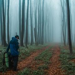 Боржавський туман