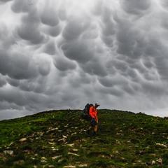 Чорногори хмарні