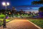 Вечерний свет большого города
