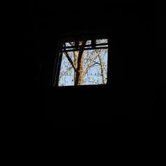 ти стіна? я в тобі пробиваю вікно ти вікно? я твої розбиваю шиби © Іздрик