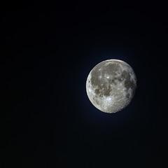 Луна сегодя 31.01.2021