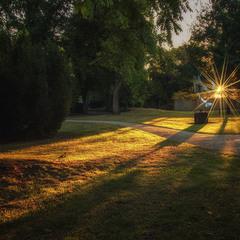 Солнышко в рейнском парке