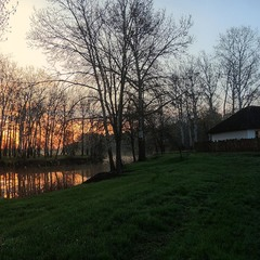 Утро красит...