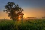 Сонечко сходить над широким степом