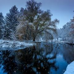Сапфірами сніги світились, сполохавши солодкі сни