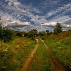 Дорога до ставка