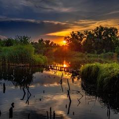 Тихо вечір схилився над ставком...