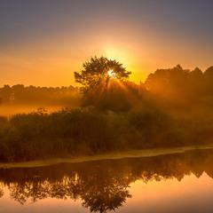 і стояла стара груша на березі Тясмину осяяна ранішнім сонцем...
