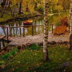 Вишиває осінь на канві зеленій золоті квітки...