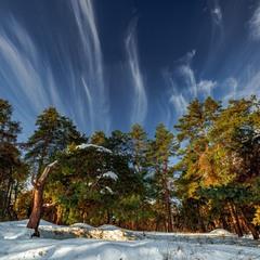 Художник-зима малює картини