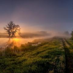 Сонце зійшло і морок щез, ранок у чистих росах…