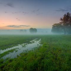 В травах запашних, сховався вітер. Туман накриває....