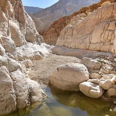 Ущелье реки Машмар