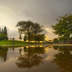 Дождливо в парке