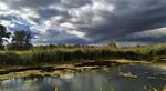 Небо закутали хмари