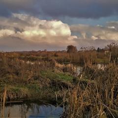 Клубочаться хмари над річкою