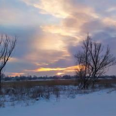 Народження зимового дня