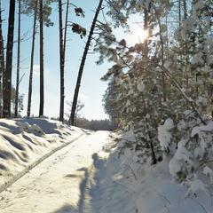 Засніжена дорога до сонця