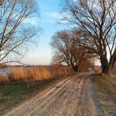 Вздовж озера