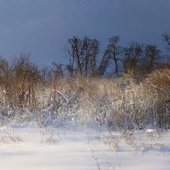 Снігом все навколо замело