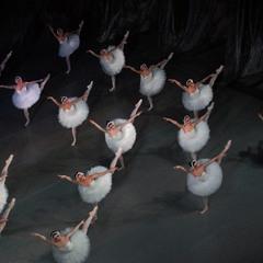 Семнадцать белых Лебедей ...