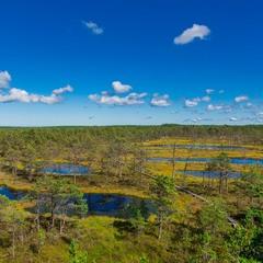 Національний парк Лахемаа