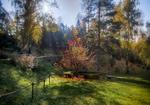 Осенняя атмосфера