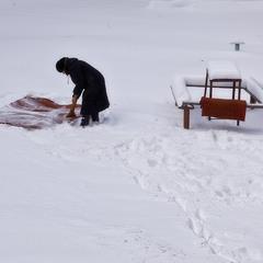 Про зиму и ковры