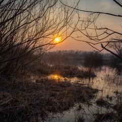 Містичне болото