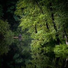 Рыбалка на старом пруду