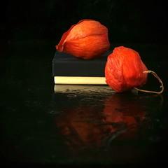 Червоне - то любов, а чорне - то журба...