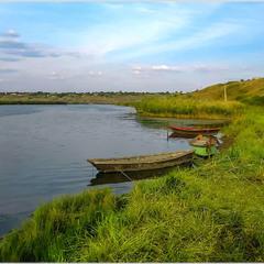 Інгульські заплави.