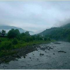 Пливуть тумани над Чорною Тисою.