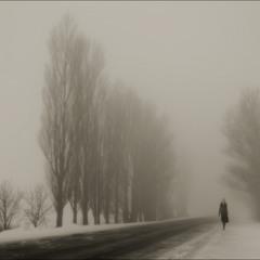 ...Туман...