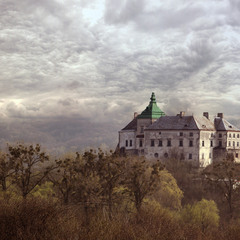 Олеский замок...