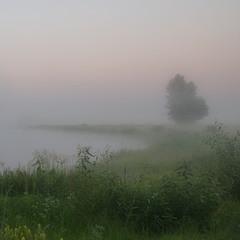Ранок на Солонецьких