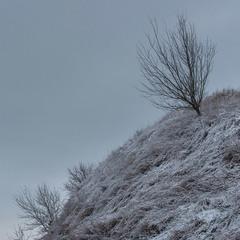 Білівські пагорби ...