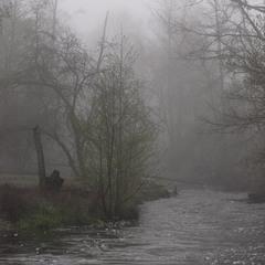 Поліська річка