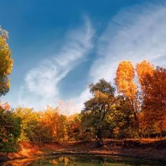 Осень-лебедь