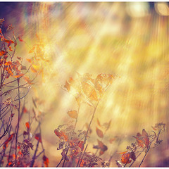...solar wind...