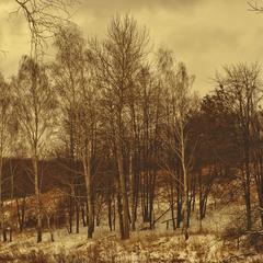 Демисезонная зима