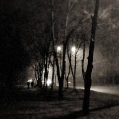 Ночные путники