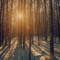 Луч солнца..