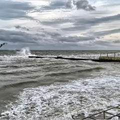 Закручинилось Чёрное море