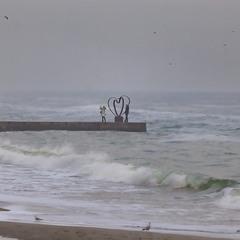 Фотосессия  в  шторм