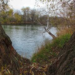 Подгляделки за рекой