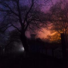 Декабрь. Туманный  вечер на Фонтане .