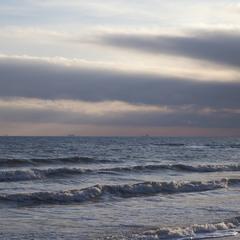 В гостях у холодного моря